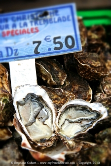 Oysters from Arcachon