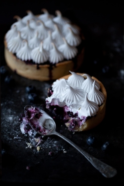 Myrtilles-blueberries-my-little-fabric-05