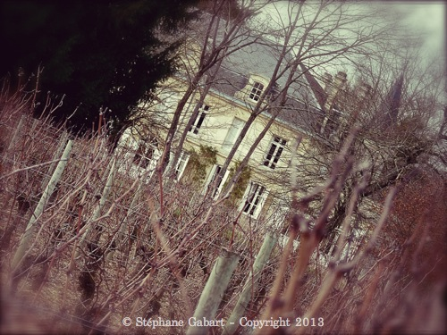 P1010603 _Snapseed