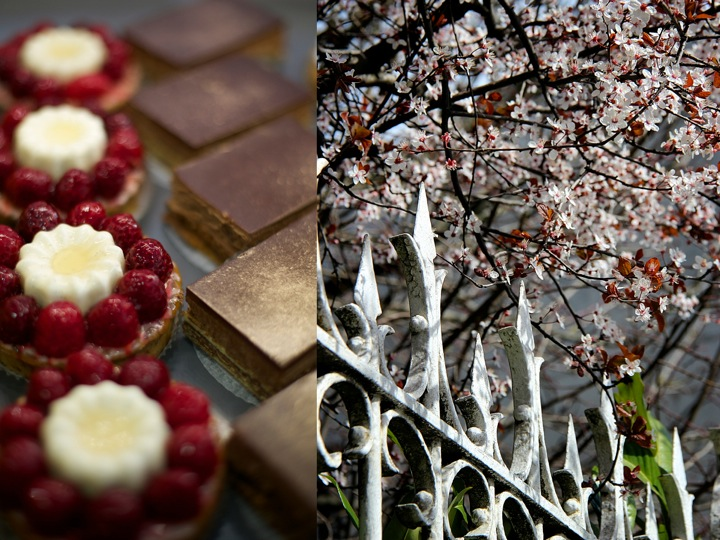 Pastries and flowers, bordeaux wine tours, Food and lifestyle photography