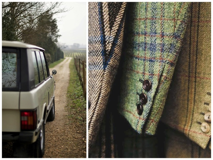 Range Rover in the vineyard