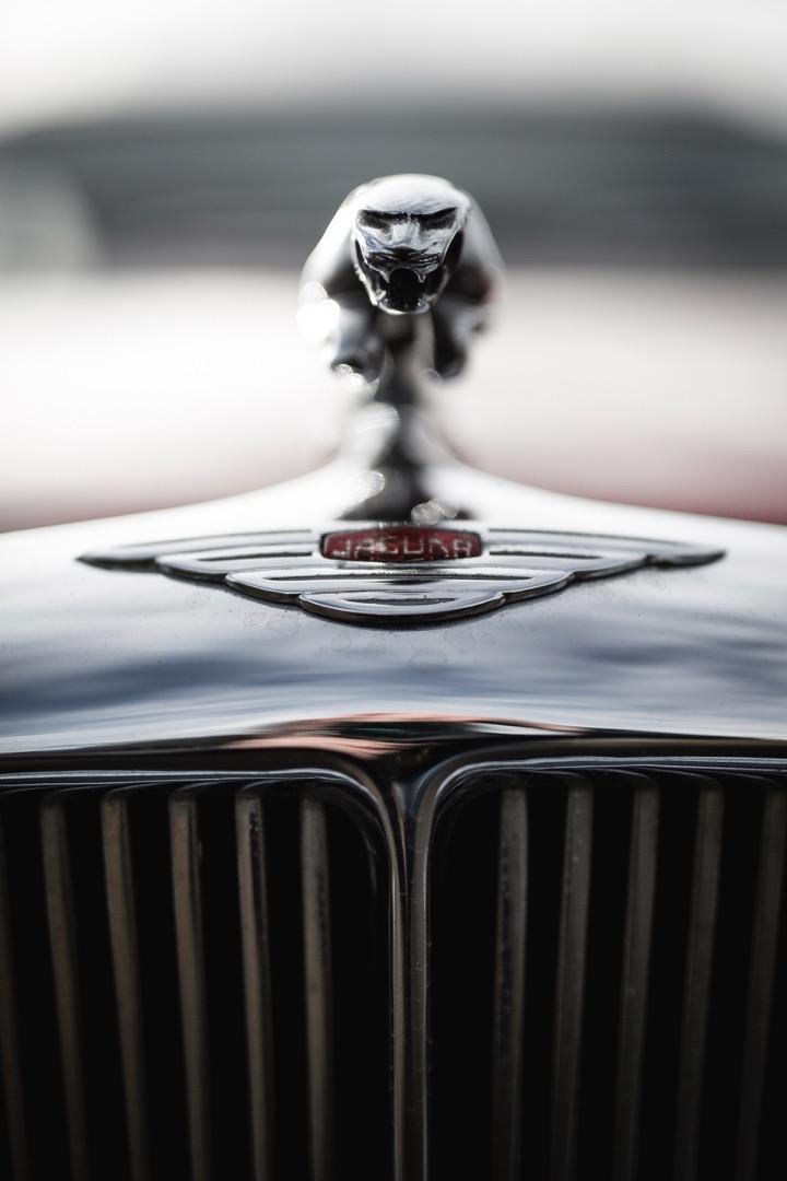 Jaguar-hood