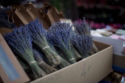 Provence-nice-market